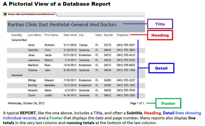 A Database Report displays summarized data